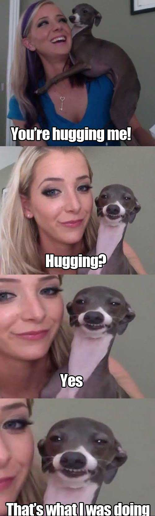 This looks so much like the Italian Greyhound we had, except he didn't look scary, and he really did hug us!!!: Dogs, Jennamarbles, Funny Pictures, Jenna Marbles, Funny Stuff, Humor, Funnies, Animal