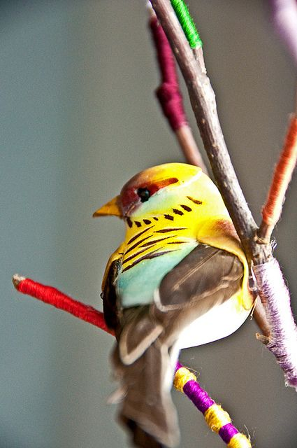 Bird Day is celebrated January 5th. This holiday was first observed by the superintendent of schools in Oil City, Pennsylvania, Charles Almanzo Babcock. This day focuses on preservation and understanding of their natural habitats.: Colorful Birds, Birds B