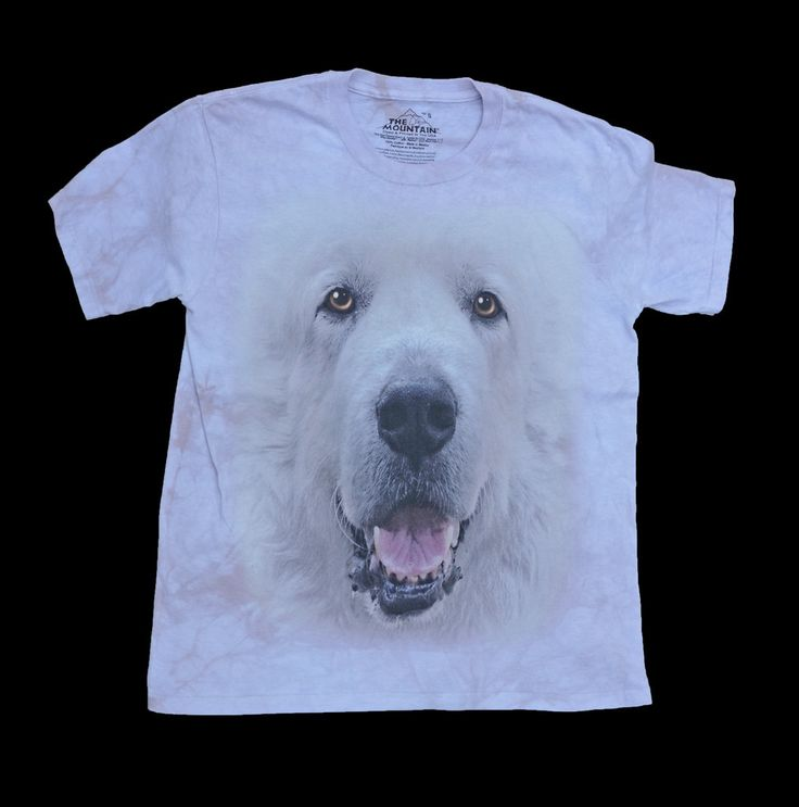 """Great Pyrenees Big Face T-shirt in Adult Sizes"":  T-Shirt, Pyrenees, Dogs Puppies, Face T Shirt, Big Face, Big Beautiful, Beautiful Dogs, Big Dogs"