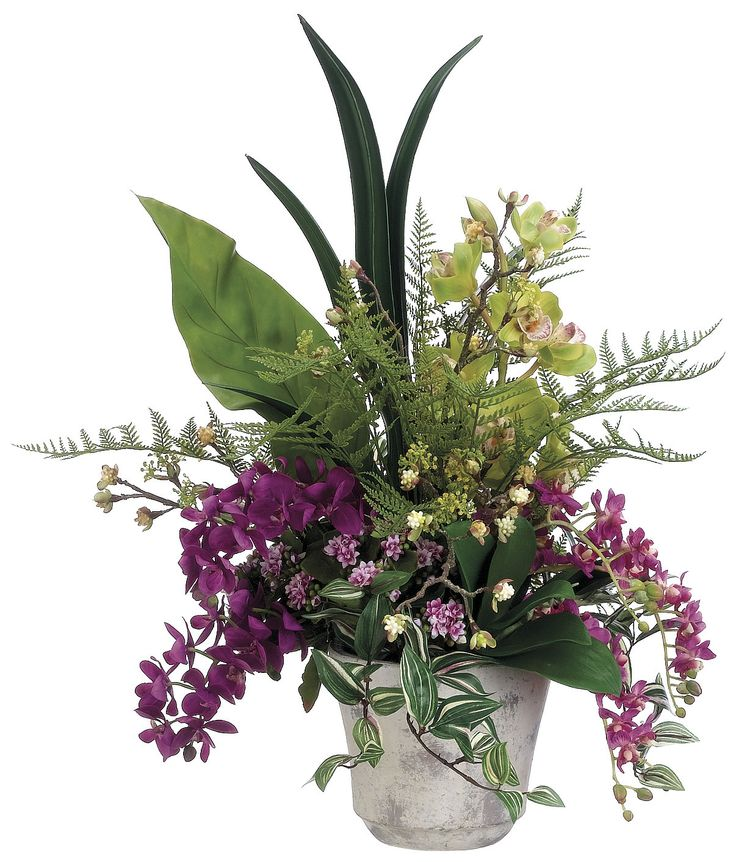 Phalaenopsis Orchid, Cymbidium Orchid and Oncidium Arrangement: Flower Arrangements, Cymbidium Orchids, Oncidium Arrangement