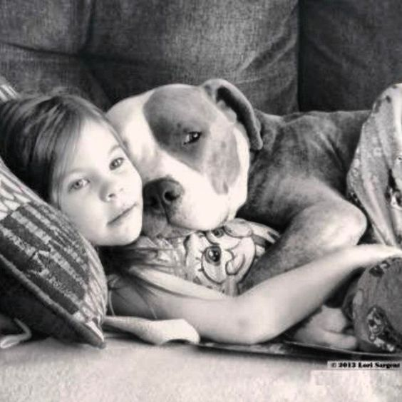 I hate when people say that pitbulls are the most dangerous dogs because all dogs are the kindest.: Friends Snuggle, Friends Child, Best Friends, Pitbulls And Kids, Pittypride Pitbulllove, Kids Hugging Animals, Pitbulllove Pitbull, Dogs Hugging People, Bu