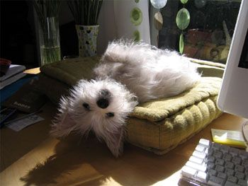 Can't a guy get a few rays every once-in-awhile?  I'm just chillin'.