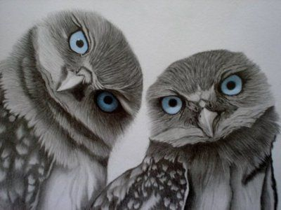 """A Wise Old Owl Sat on an Oak; The More he saw the Less he Spoke; The Less he Spoke the More he Heard; Why Aren't we Like that Wise Old Bird?"""""""