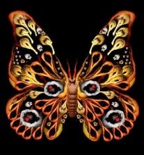 Digital photography art, acrylic paintings, and other artwork by internationally renowned artist Cecelia Webber. This artwork is part of the butterfly series: Digital photography <3