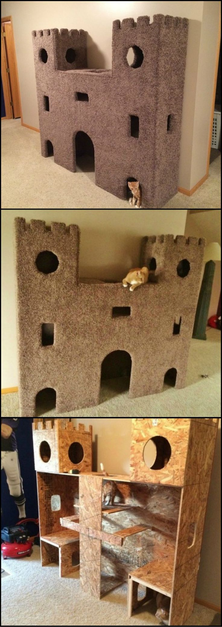 We found the ultimate cat castle! This is a great idea to keep our indoor cats busy. Discover more pet accommodations on our site now at http://theownerbuildernetwork.co/j0ma Is this something your pampered feline would love to have?: Indoor Cat, Diy Pet