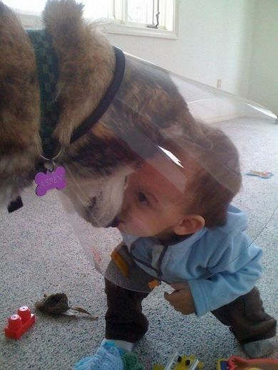 awwwwww: Dog Baby, A Kiss, Best Friends, Puppy Love, Funny Stuff, Bestfriend, Cute Dog, Kid