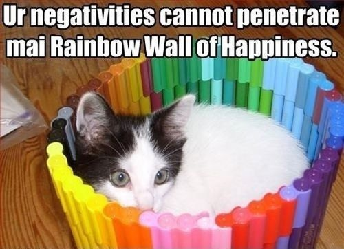 View All - Funny Animal Pictures With Captions - Very Funny Cats - Cute Kitty Cat - Wild Animals - Dogs (fun,funny,humor,jokes): Cats, Animals, Giggle, Rainbows, Funny Stuff, Rainbow Wall, Happiness, Things