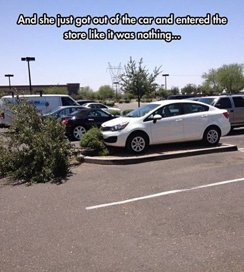 Funny Pictures With Captions (25 Photos): Car, Parking Spots, Funny Pictures, Funny Stuff, Humor, Funnies, Parking Space, Photo