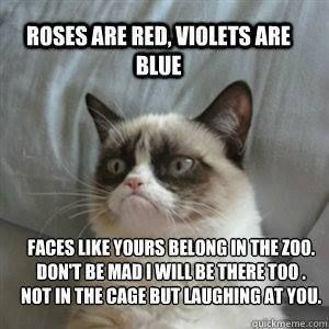 Grumpy cat funny, grumpy cat humor, grumpy cat meme, sarcastic funny, grouchy cat …For more funny quotes and hilarious images visit www.bestfunnyjokes4u.com: Funny Quote, Cats Funny Meme, Funny Grumpy Cat Meme, Sarcastic Meme, Grumpy Cat Song, Grumpy Cat