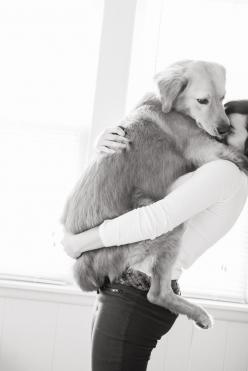 A little bit of life.: Dogs, Puppy Love, Big Baby, Fur Baby, Friend, Animal, Golden Retriever