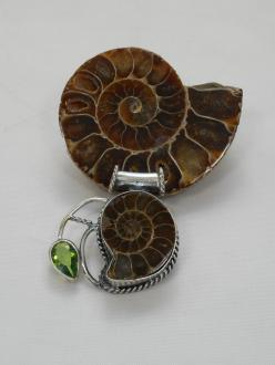 Ammonite Fossil Pendant 9 with Peridot: Beautiful Baubles, Boutique Pin, Ammonite Fossil, Pin Exchange, Shop