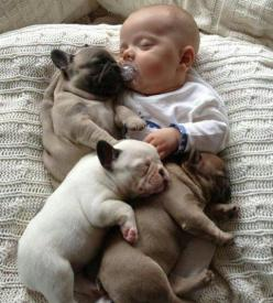 : Babies, Animals, Sweet, Dogs, Puppy, Adorable