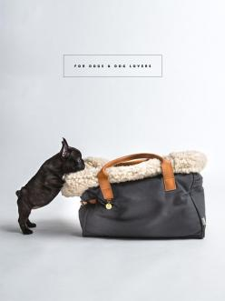 BEAUTIFUL ACCESSORIES FOR DOGS AND DOG LOVERS: Animals, French Bulldogs, Puppy, Dog Carrier, Frenchie, Bags