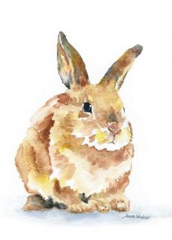 Bunny Rabbit Watercolor: Watercolor Painting, Rabbit Watercolor, Watercolors, Bunny Art, Water Color, Bunnies