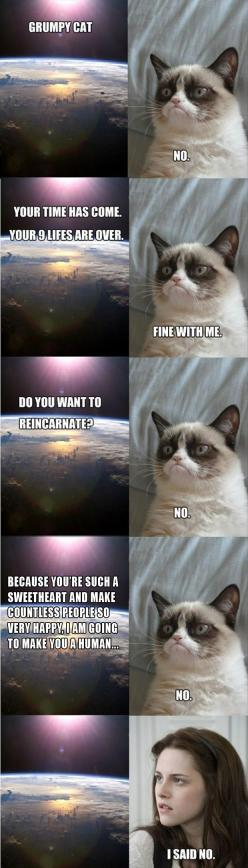 grumpy cat is made into kristen stewart, funny pictures: Cat Reincarnated, Grumpycat, Funny Pictures, Kristen Stewart, Funny Stuff, Humor, Grumpy Cat