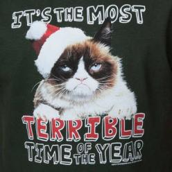 Grumpy Cat Terrible Christmas T-Shirt: Cat, Adorable Animals, Animals Funny, T Shirt, Animal Quotes, Books Worth, Christmas, Grumpy, Awesome Things