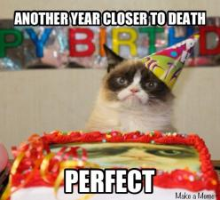 Happy 1st Birthday Grumpy cat. You changed everyone's life for the better. No.: Cats, Happy Birthday, Cat Birthday, Grumpycat, Birthdays, Funny Stuff, Grumpy Cat, Happybirthday, Animal
