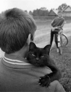 I like that this photo capture a cat showing his love for a human along side his anger that someone caught it on film.: Photos, Animals, Pet, Black Cats, Cat Hug, Blackcats, Kitty, Friend, Photography