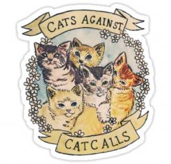 I pitty and feel sorry for those who claim they hate cats... so what... your loss. Odds are they have attachment issues.: Cats, Tamaghosti, Catcalls, Cat Calls, Feminism, Things, T Shirts, Tshirt, Cat Lady
