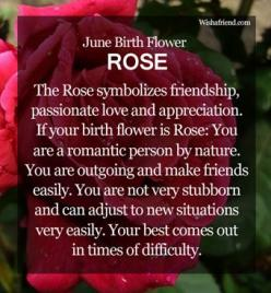 June Birth Flower : Rose Annie girl's favorite flowers are roses!!! I didn't know they were her birth month flower :): June Birth Flowers, Birth Month Flowers, Birthday Items, June Flower, Favorite Flower, June Birthstones