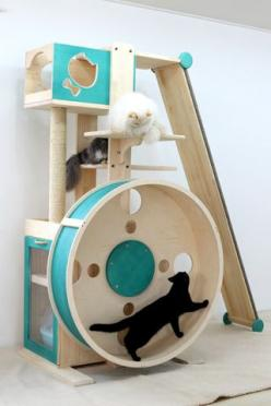 Loo Loo Wheel with long climbing ramp - expensive but you can have custom designed. The bottom back compartment is for a cat box (they call it a cat toilet). Hand made in Korea.: Exercise Room, Pet, Cat Tree, Cat House, Cat Room