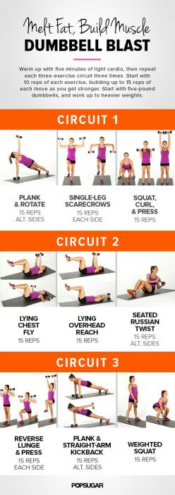 Melt fat and build muscle with our dumbbell blast circuit workout! You can easily make these more challenging and effective with heavier weights.: Dumbbell Workout, Dumbbell Blast, Dumbbell Circuit, Body Workout, Printable Workout, Work Out, Fitness Worko