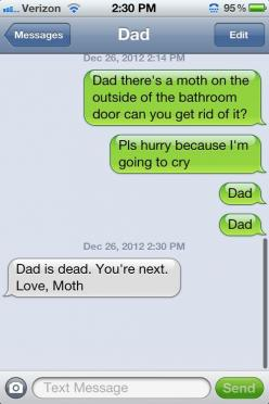 Obligatory first re-pin, dedicated to anyone with an arachnophobic spouse or family member ;-): Funny Texts, My Dad, Funny Stuff, Humor, Dads, Moth