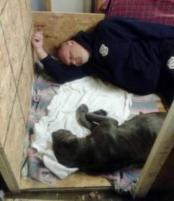 """Officer John Lyons often goes above and beyond the call of duty, rescuing stray dogs while on his night shift. A few weeks ago, he rescued a special case. Cleveland Police said, """"While on duty last week he found this sickly pregnant dog and brought he"""
