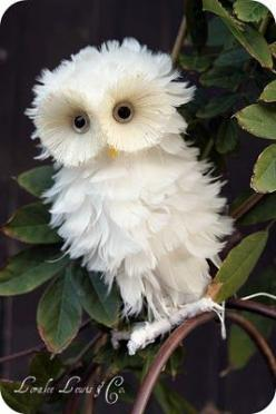 owl. CUTE!: Animals, Nature, So Cute, Baby Owl, White Owls, Creatures, Beautiful Birds, Things