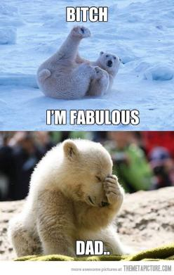 Parents are embarrassing no mater what species: Animals, Funny Pics, Polar Bears, I M Fabulous, Funny Stuff, Humor, Funnies, Dads, I'M Fabulous