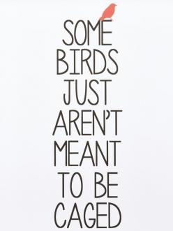 Some birds just aren't meant to be caged.: Birds Quotes, Redemption Quote, Aries Quote, Bird Cage Quote, Life, Inspirational Quotes Birds