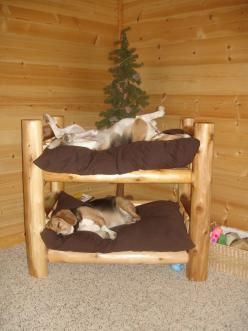 Wards Log Furniture: Rustic Log Beds, Dog Beds and Other Hand-Made Furniture - Dog Beds: Doggie, Animals, Idea, Dogs, Bunk Beds, Pets, Dog Beds, Bunkbed, Beagle