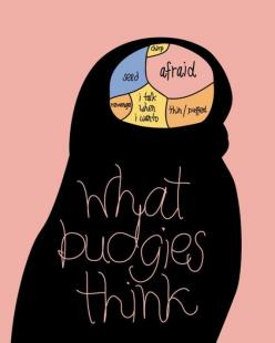 What Budgies Think. So true.  makes me a little sad that my baby is afraid most of the time tho .: Parrots, Budgies Galore, Parakeet Budgie, Budgies Parakeet, Amazing Animals, Bird Parakeet, Budgies Brain, Budgies ︎