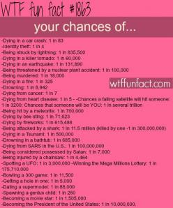 You have a better chance of winning the lottery than getting killed by a shark!: Wtf Facts, Wtf Fun Facts, Weird Facts, Better Chance, Interesting Facts, Funfacts, Shark Fact, Chances Live, Random Facts