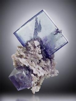 萤石+菱铁矿 FLUORITE on SIDERITE 萤石+菱铁矿,产自中国(Yaoganxian Mine, Yizhang Co., Hunan Prov., China),7.6 cm 高。Irv BROWN 收藏: Minerals Crystals Gems, Crystals Minerals Gems Fossils, Gemstones Rocks, Gemstones Crystals, Crystals Gemstones, Crystals Gems Rocks, Gemstone