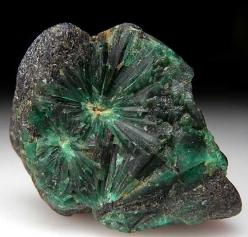 """Radial groups of Emerald crystals in black schist matrix. Unusual formation of crystals that is different than trapiche formations and unlike any other Emerald specimen I have seen before. Another radial group on the backside too."": Crystals, Eme"