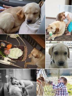 """"""" Since before her birth, my daughter and my dog have been  best friends""""  Cutest thing to come across!: Best Friends, My Daughter, Baby Dog Pictures, Bestfriends, Ass Animals, Bff, Puppy, Animals Attack"""