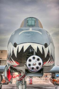 A-10 Thunderbolt by Photomatt28, via Flickr-- this would be the plane I would fly if I were a pilot. Badass: Military Aircraft, Airplanes, A10, Aircraft, War Planes, Fighter Jet, A 10 Warthog, Tank Killer