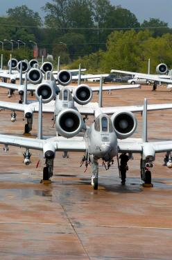 A-10s Ready to Hunt: Airplanes Jets, A 10 Thunderbolt, Air Force, A 10S Ready, Airplanes Planes, A 10 Warthogs, A10 Airplanes