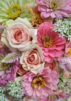 A lovely mix of pastel flowers for fall (don't be fooled by the colors - these aren't spring flowers!). Zinnias, roses, sedum and upright amaranthus.: Color, Roses, Beautiful Flowers, Bloom, Flowers, Garden, Photo, Floral, Flower