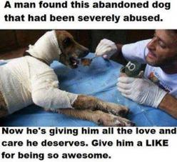 A man found this abandoned dog that had been severely abused. Now he's giving him all the love and care he deserves. Give him a LIKE for being so awesome.: Animals, Hero, Dogs, Pet, Animal Abuse, Abandoned Dog, Photo, Friend, Man