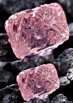 A rare and very valuable pink diamond has been found in Australia: http://www.bbc.co.uk/newsround/17151265: Gems Minerals Crystals, Diamonds Gemstones, Gems Crystals Minerals, Crystals Gems, Rocks Minerals, Gemstones Crystals, Crystals And Gemstones, Rare