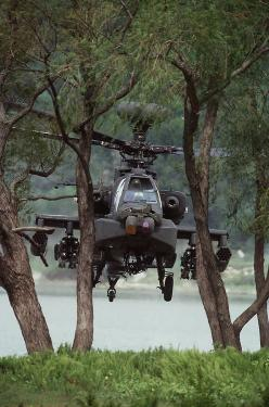 AH-64D Apache hiding behind trees.  Yes, you can see it (else the picture would use lame), but the low altitude and trees make it much more difficult for some radar systems to locate.: Aviation, Military Aircraft, Airplane, Ah 64 Apache, Chopper, Military