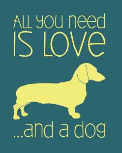 All you need is Love... And a dog #doxie #Dachshund. How convenient that one will give you the other.: Doggie, Animals, Quotes, Dachshund, Pet, Dog Doxie, Wiener Dogs, Dog Humorous