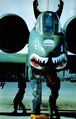 Apparently this is the ugliest plane ever built... well, for an ugly plane, it's pretty GORGEOUS lol: Ugly Plane, Airplanes, Flight Time, Ugliest Plane, Pretty Gorgeous, A 10 Warthog, Built, Airforce Aircraft