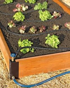 Aquacorner raised bed soaker system...genius! This is what I'll have to do this year when I set up my square foot garden!: Soaker Hose, Garden Ideas, Soaker System, Raised Gardens, Raised Beds, Bed Watering, Gardening, Raised Garden Beds, Aquacorner S