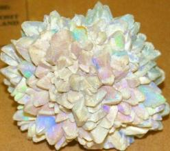 Australian opal cluster -magnificent !: Rocks Gems Crystals, Opal Cluster, Rare Gemstones, Gems Minerals, Gem Stones, Beautiful Gems, Gems And Minerals, Opals
