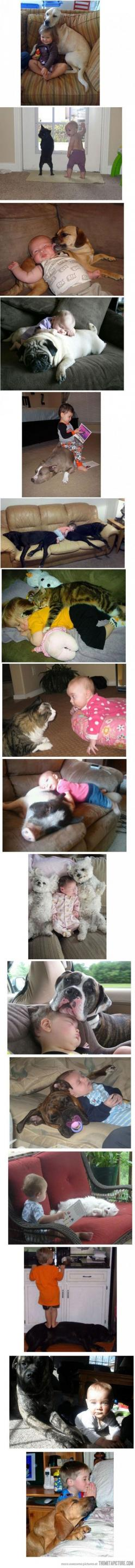 Babies and kids really have a special relationship with their pets. Each picture tells us so more about their love for their human.: Best Friends, Sweet, Pets, Puppy, Baby, Kids, Dog, Animal
