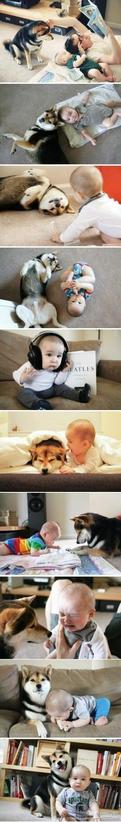 Baby & dog OMG the most precious thing everrrrrrrrr: Babies, Dogs, Sweet, Best Friends, Shiba Inu, Puppy, Kid, Animal