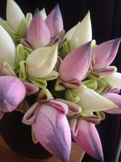 Banana Flowers - can be used in culinary like Squash Blossoms. Found in India and Asia but hard to find here in the states: Flower Bouquets, Bananas, Beautiful Flowers, Bloom, Flowers, Garden, Lotus Flower, Floral